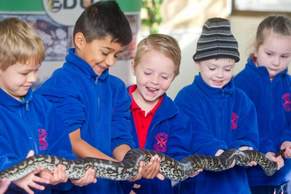 EnviroEdu at Nichols Point Primary School. Malaki Rigby and Harrison Mitchell, both 5.Picture: Carmel Zaccone